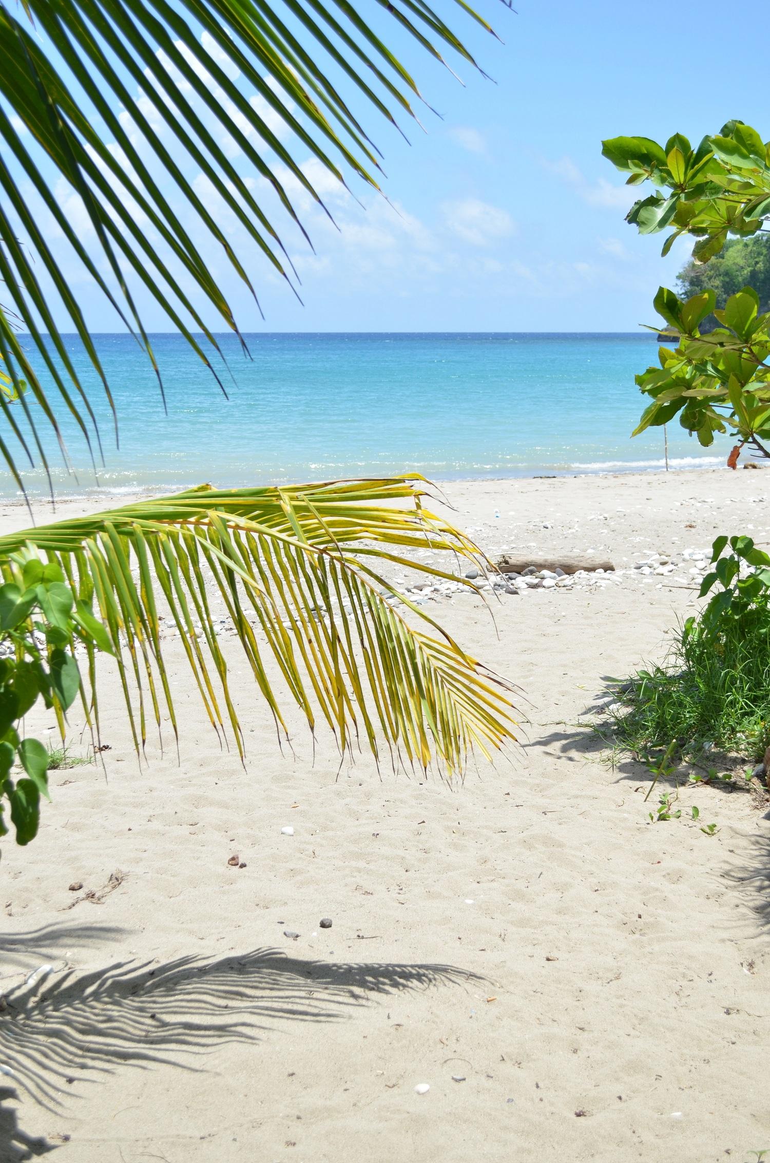 winifred beach_jamaica_BEST OF JAMAICA
