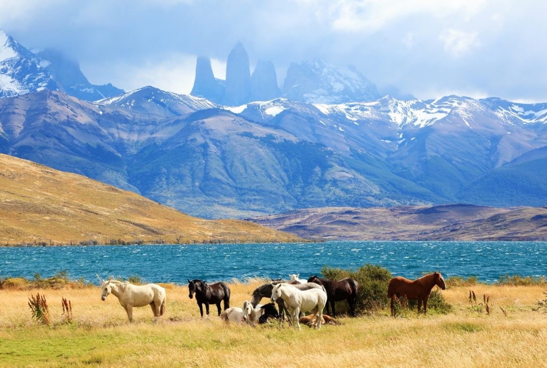 South American Andes. Park Torres del Paine in Chile_shutterstock_221190883