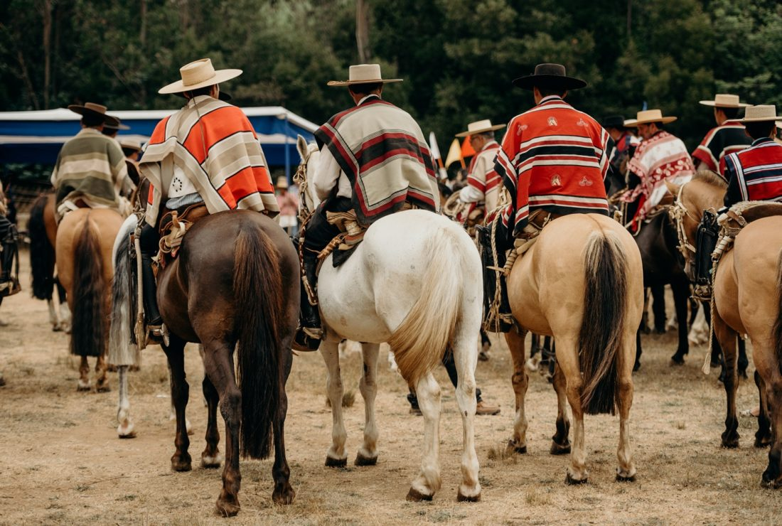 Chilean event hausos horses