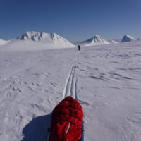 Svalbard Norway Sledding