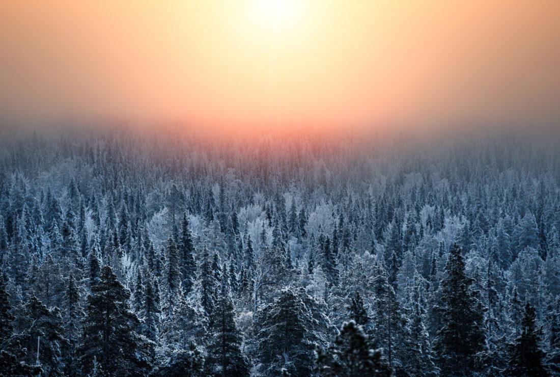 Finnish Lapland at sunset