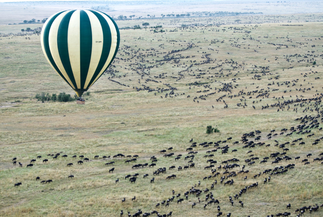 Great Migration from hot air balloon in Kenya
