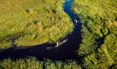 Mokoro safari in the Okavango Delta