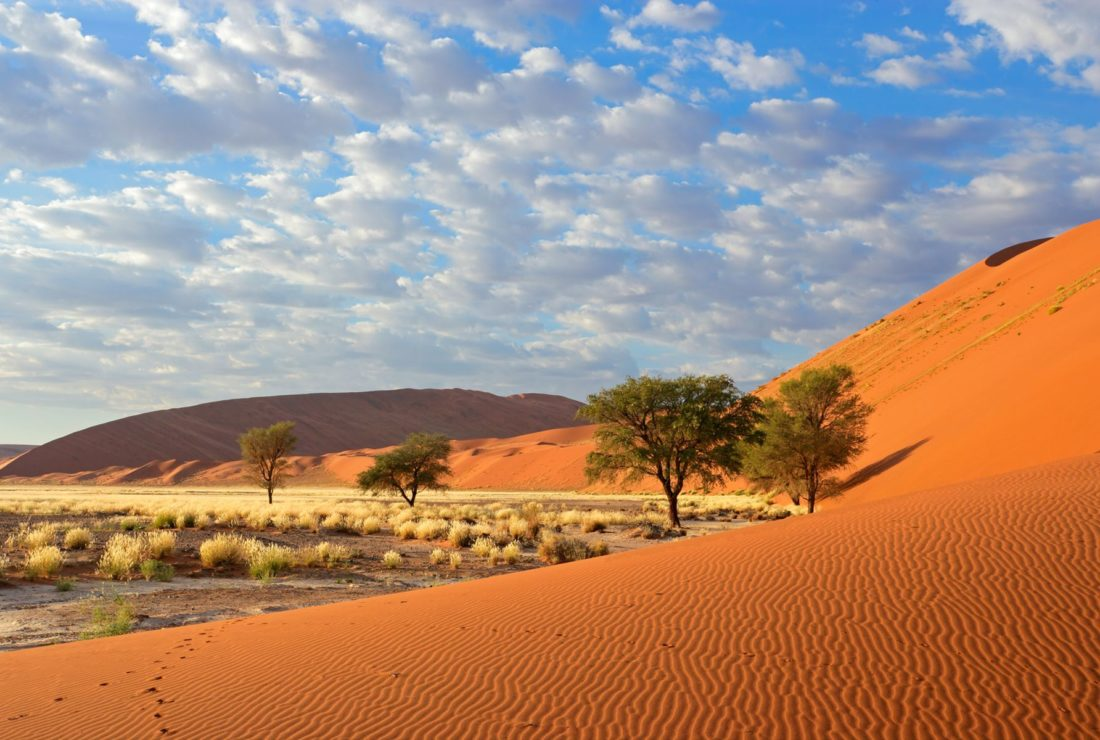 Namibia's landscapes