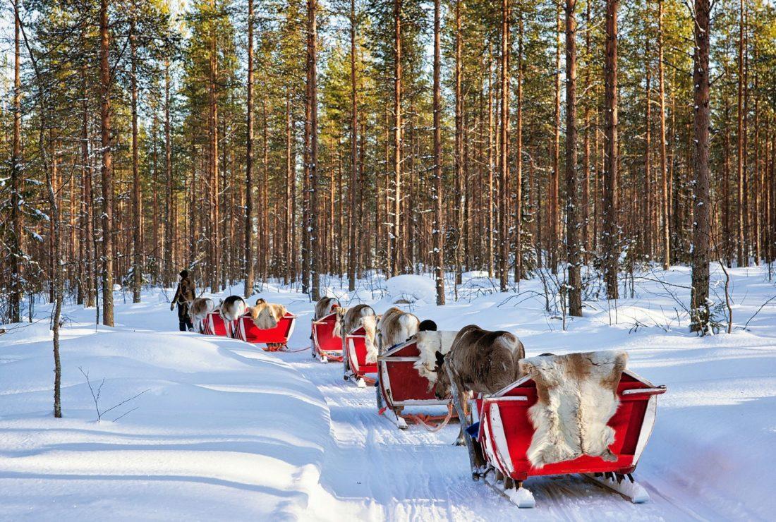sledding rovaniemi snow lapland